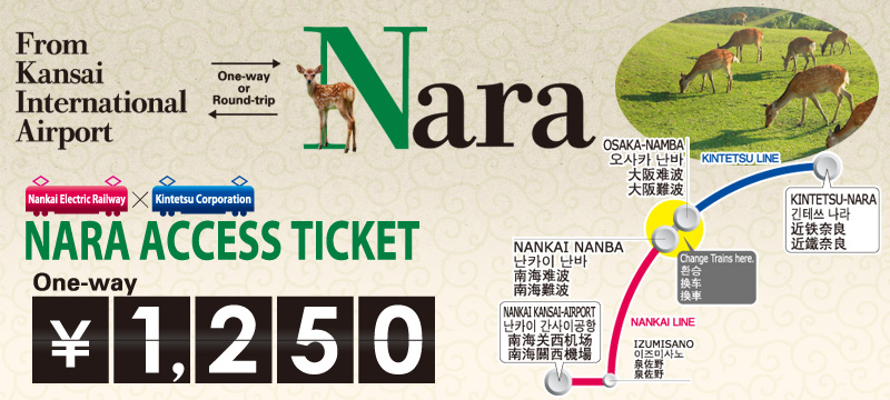 Nara Access Ticket