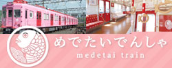 Medetai Train