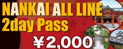 NANKAI ALL LINE 2day Pass